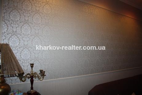 2-комнатная квартира, Хол.Гора - фото 11