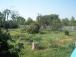 Продам жилой дом в Мерефе с участком 30 соток - Image6
