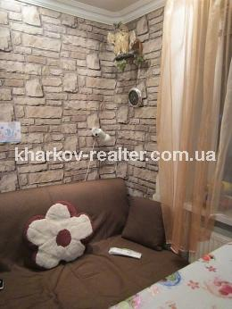 1-комнатная квартира, Нов.Дома - фото 1