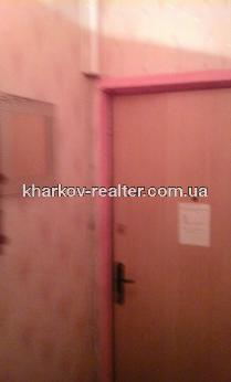 1-комнатная квартира, Нов.Дома - фото 7