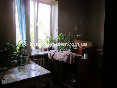 2-комнатная квартира, подселение, Лысая Гора - Image1