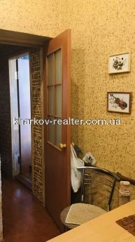 3-комнатная квартира, ЮВ и ЦР - Image16