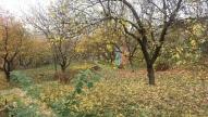дача, Харьковский - фото 1