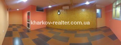 помещение, Жуковского - Image9
