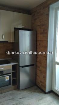 1-комнатная квартира, Гагарина (нач.) - Image13