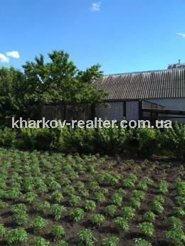 Дом, Великобурлукский - Image4