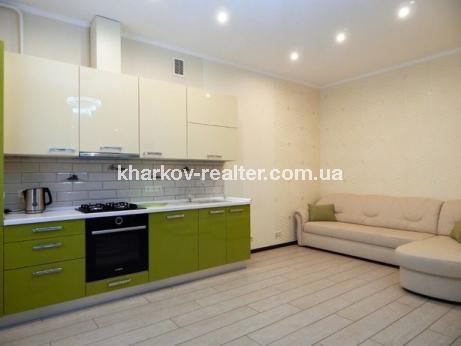 2-комнатная квартира, Журавлевка - Image1