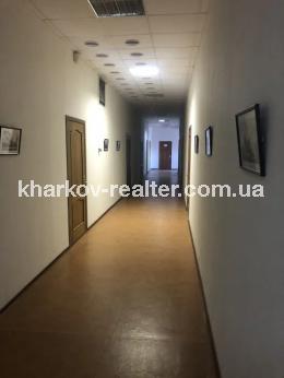 офис, Конный рынок - Image1