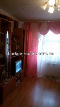 1-комнатная квартира, подселение, Центр - Image2
