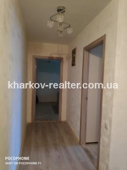 2-комнатная квартира, Павловка - Image1