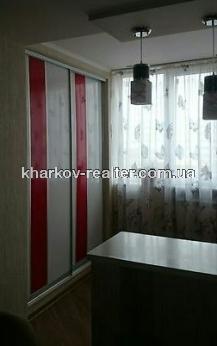1-комнатная квартира, Павловка - Image12