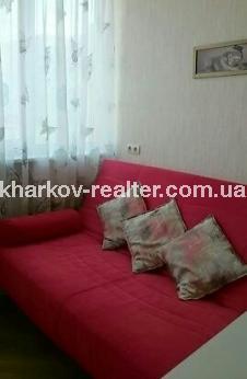1-комнатная квартира, Павловка - Image18
