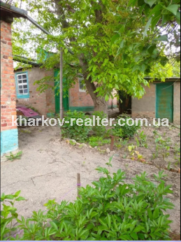 Дом, Журавлевка - Image2
