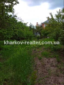 Дом, Журавлевка - Image6