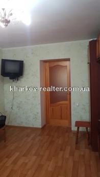 2-комнатная квартира, Павловка - Image3