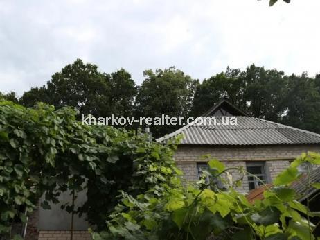 Дом, Залютино - Image6