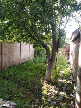 Часть дома, Сортировка - Image4