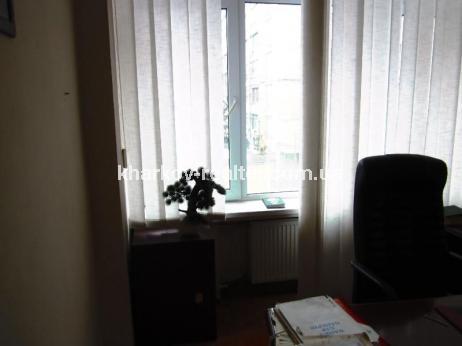 офис, П.Поле - Image3
