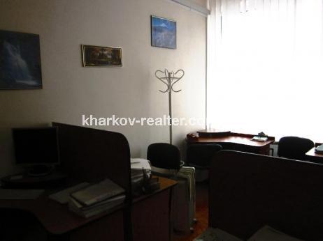 офис, П.Поле - Image5