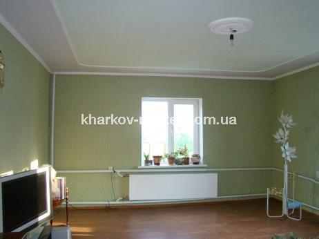 Дом, Гагарина (нач.) - Image7