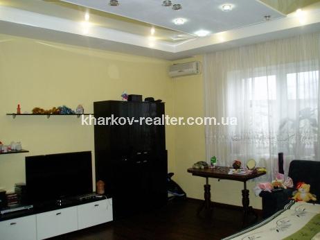 Дом, Гагарина (нач.) - Image6