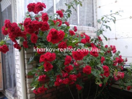 Часть дома, Харьковский - Image2