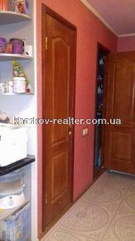 3-комнатная квартира, Шишковка - фото 2