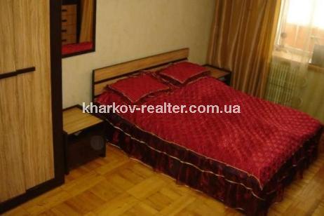 1-комнатная квартира, Красный луч - фото 2