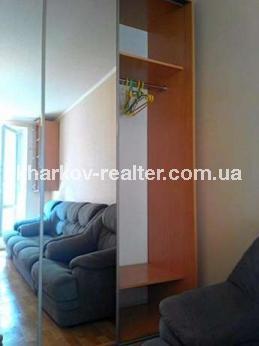 1-комнатная квартира, Павловка - фото 10