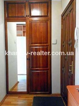 1-комнатная квартира, Павловка - фото 11