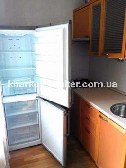 1-комнатная квартира, Павловка - фото 5