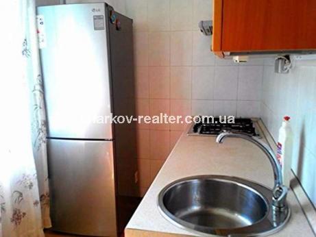 1-комнатная квартира, Павловка - фото 9