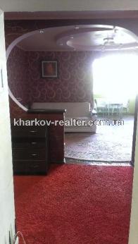 2-комнатная квартира, Павловка - Image11