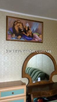 2-комнатная квартира, Павловка - Image17