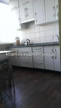 2-комнатная квартира, Павловка - Image7
