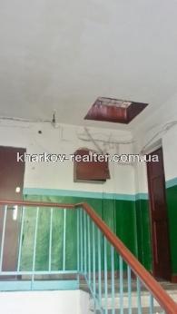 1-комнатная квартира, подселение, Конный рынок - фото 7